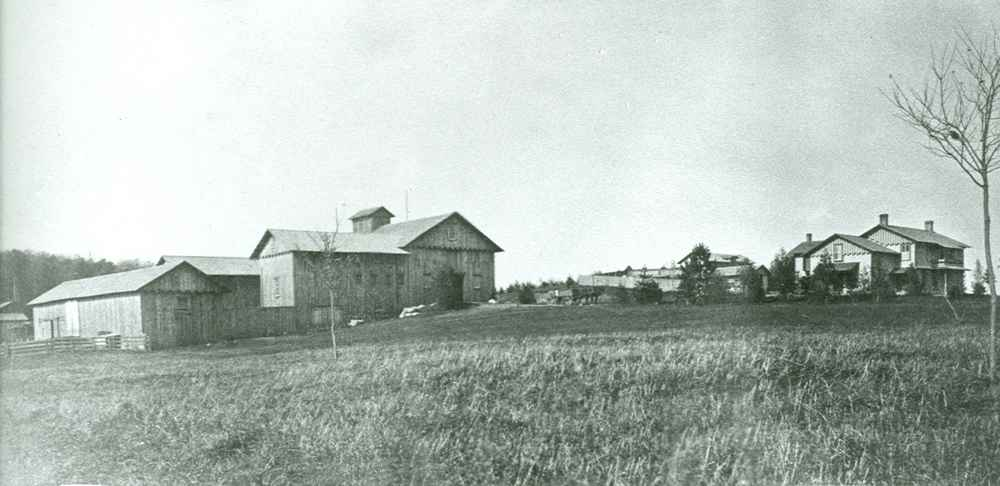 Original Fernwood and Barn